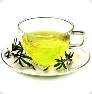 Groei360 ingredients - Green Tea